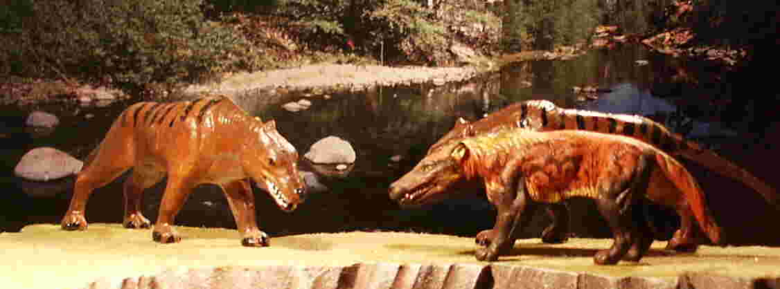 Starlux and the Kaiydo Dino Tales Andrewsarchus.